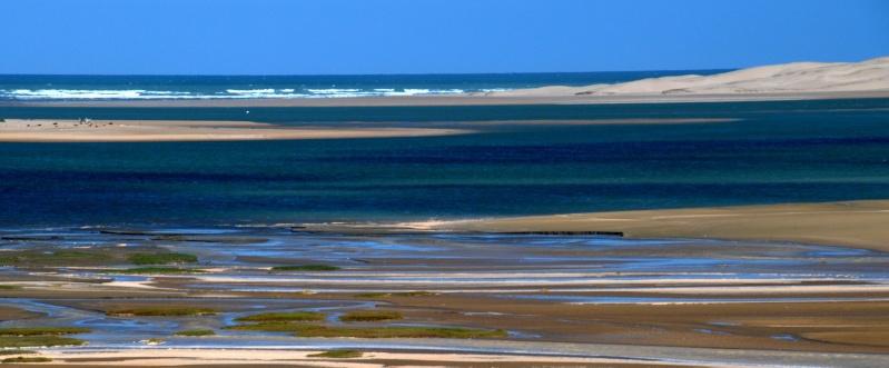[Le désert] Sahara et atlantique : plus au Sud , bivouacs , photos ... Dsc_0723