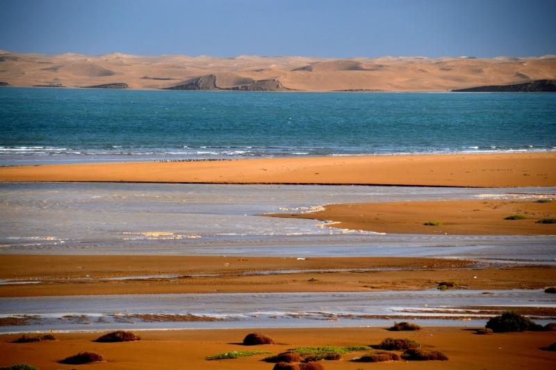 [Le désert] Sahara et atlantique : plus au Sud , bivouacs , photos ... Dsc_0938