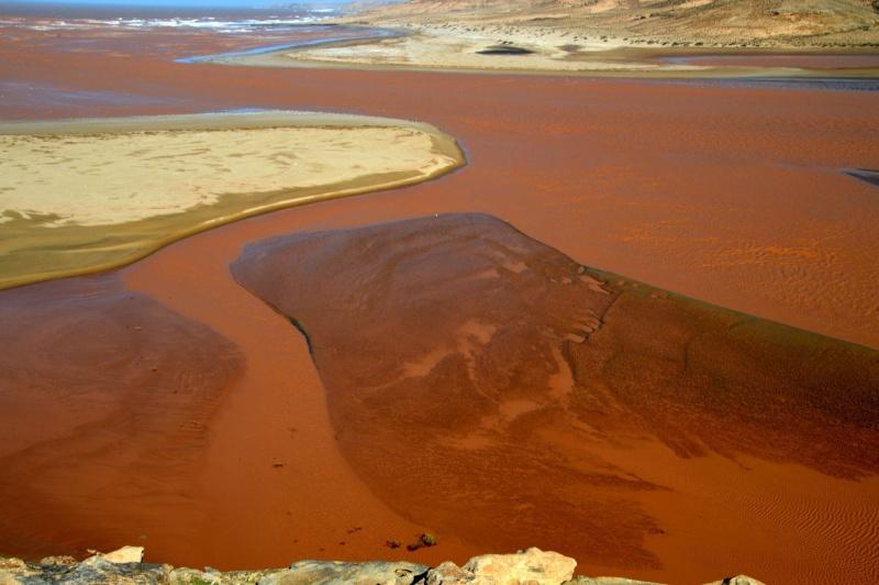 [Le désert] Sahara et atlantique : plus au Sud , bivouacs , photos ... Dsc_0939