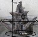 """chambre """"scandinave""""/nature en projet... argent plein ou pas ? Img_0718"""