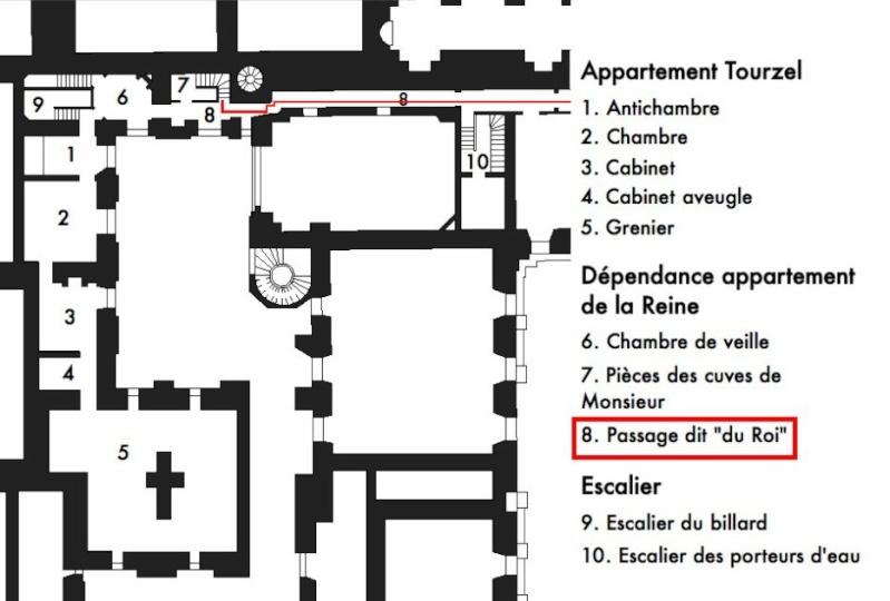 Le passage du Roi à Versailles 26909910
