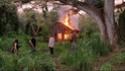 La Cabane (et les cendres) Cabane11