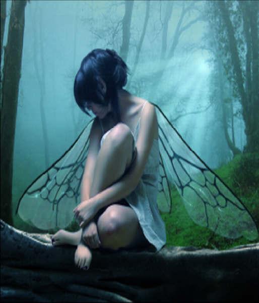 Existen, quizá en nuestra imaginación o quizá  en nuestro corazón Imyyge10