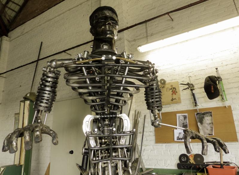 Frankenstein ..Projet en cours P1000513