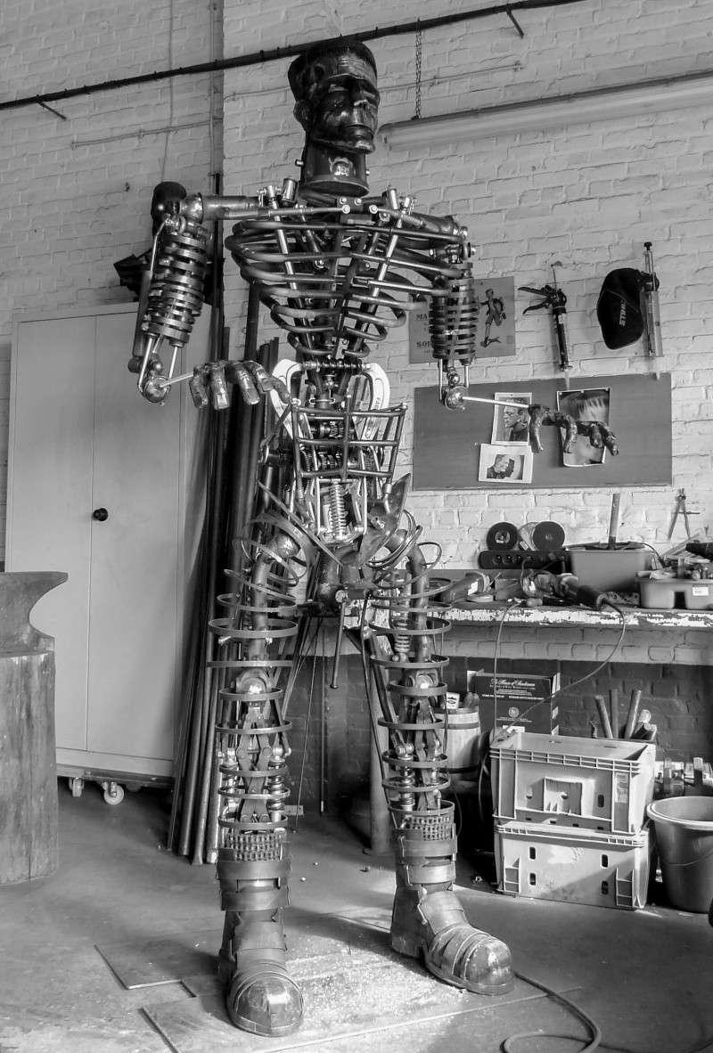 Frankenstein ..Projet en cours P1000514