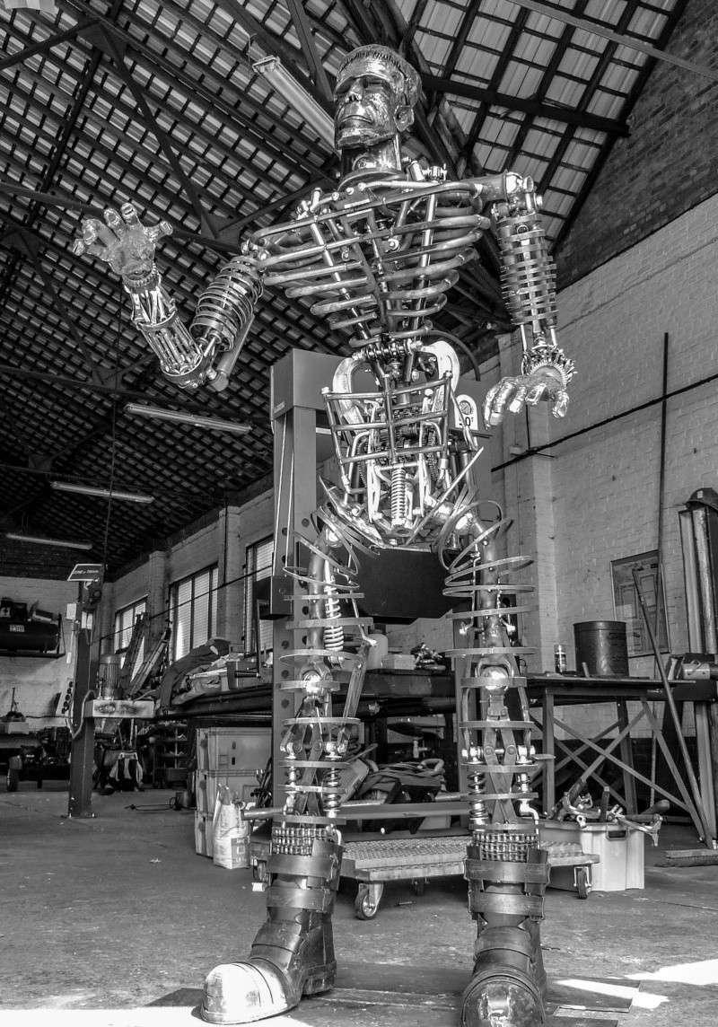Frankenstein ..Projet en cours P1000611