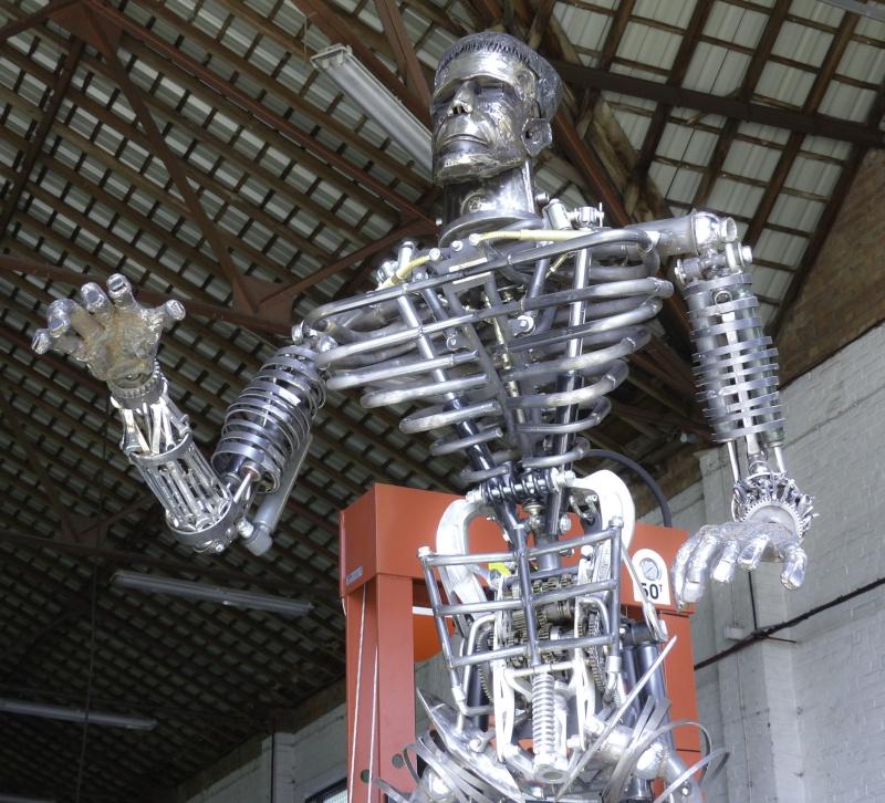 Frankenstein ..Projet en cours P1000613