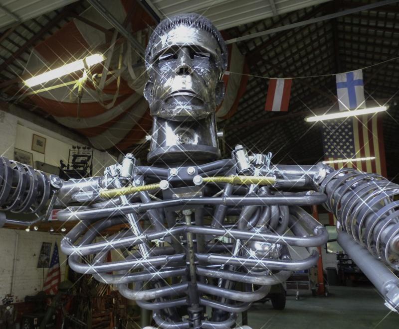 Frankenstein ..Projet en cours P1000630