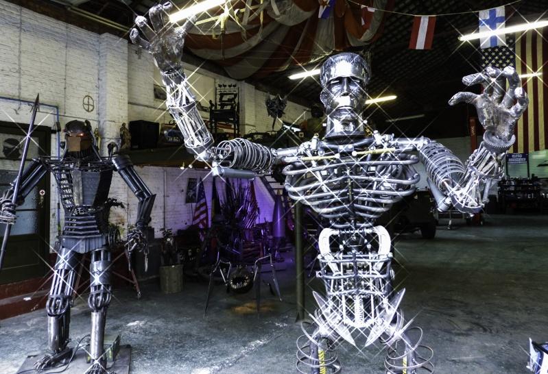 Frankenstein ..Projet en cours P1000631