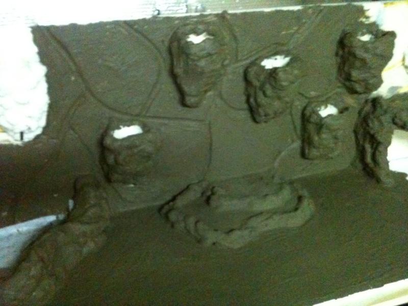 Fabrication de mon terra pour Rhiniclemmys pulcherrima Img_0315