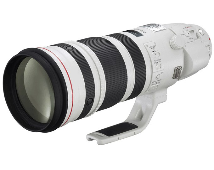 Canon EF 200-400 mm f/4 L IS Sony-a12