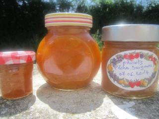Confiture abricots. pêches. brugnons + photos. 10418210