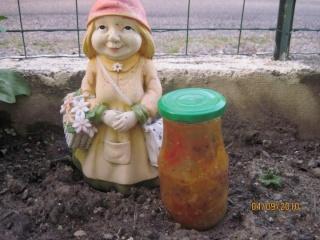 Sauce tomate aux 3 couleurs +photos. Sauce_11