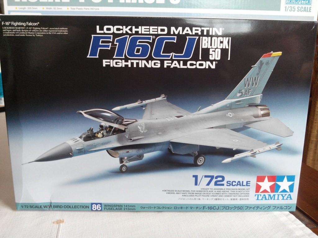F16 CJ Block 50 : TAMIYA 1/72 Img_2010