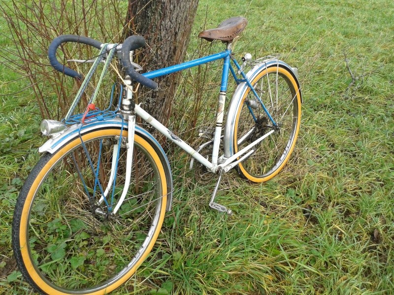 Cycles Terrot  195?  20131214