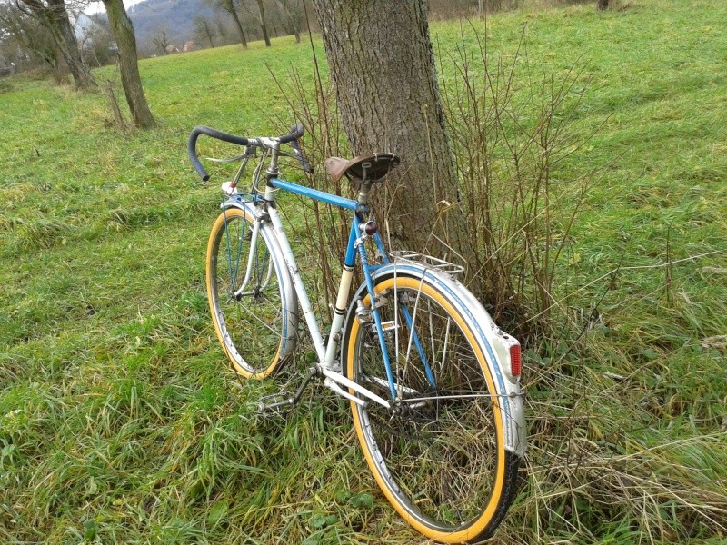 Cycles Terrot  195?  20131215