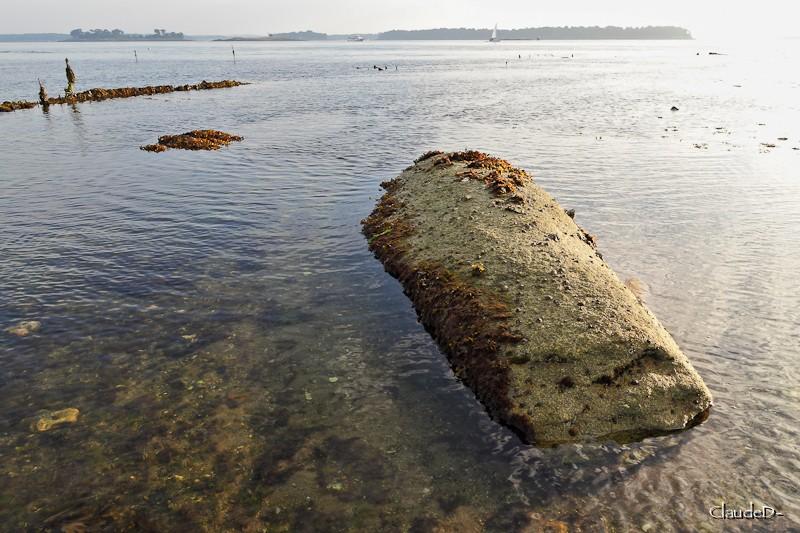 - Les sites mégalithiques de Locmariaquer - Page 2 Anonym10