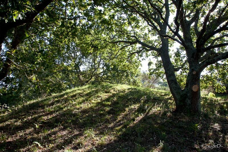 Les sites mégalithiques de Locmariaquer Hroeg210
