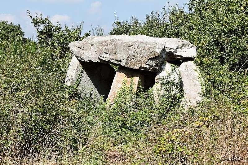- Les sites mégalithiques de Locmariaquer - Page 2 Kercad10