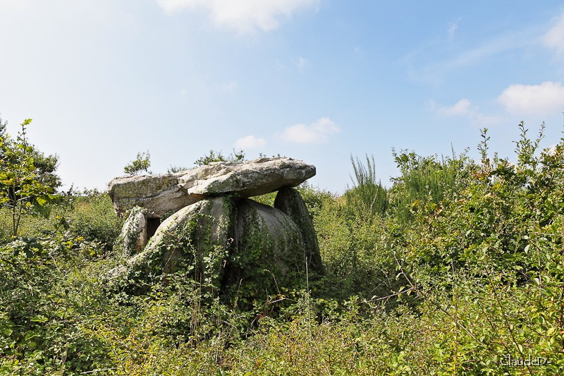 - Les sites mégalithiques de Locmariaquer - Page 2 Kercad11