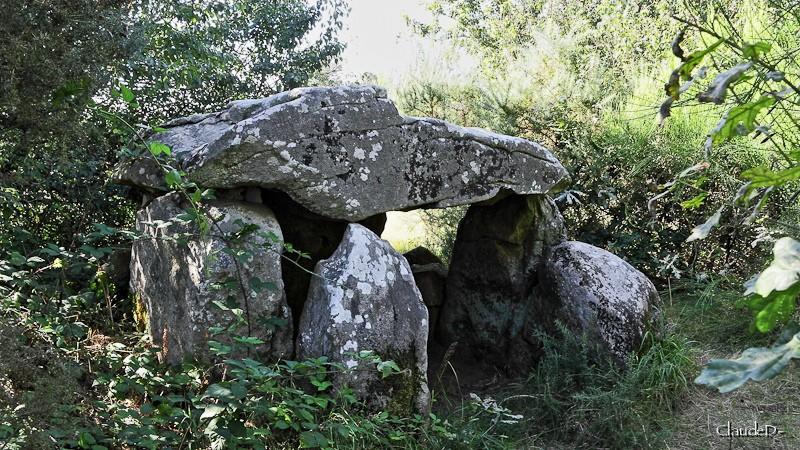 - Les sites mégalithiques de Locmariaquer - Page 2 Kerdan10