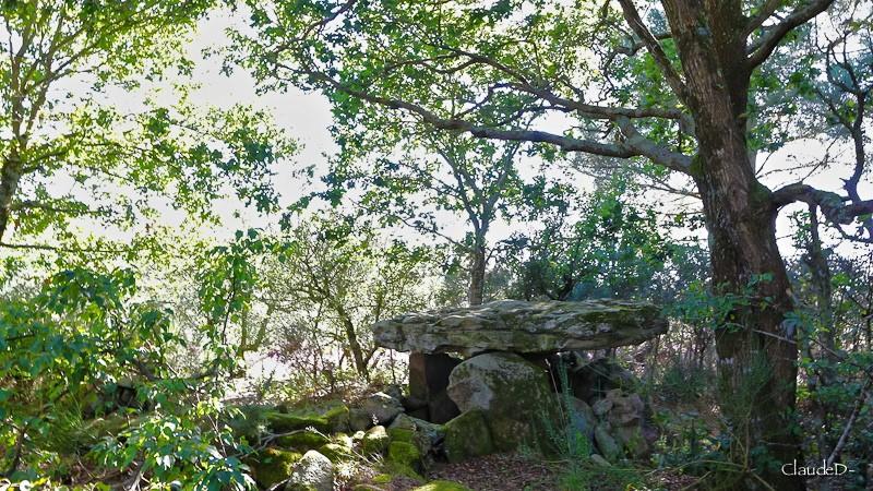 - Les sites mégalithiques de Locmariaquer - Page 2 Kerdan11