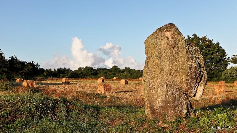 Les sites mégalithiques de Locmariaquer Letio210
