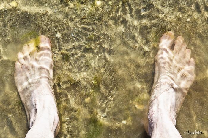 On a mis les pieds dans l'eau et on vous le prouve !! - Page 2 Pieds10