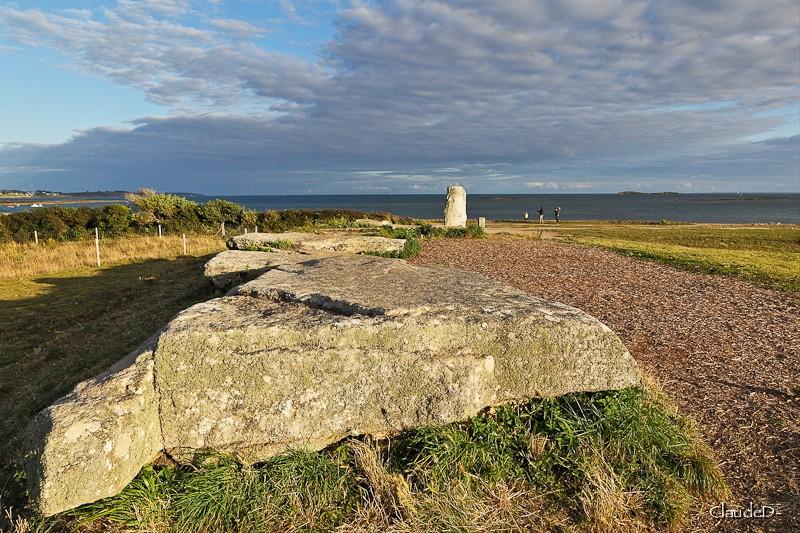 - Les sites mégalithiques de Locmariaquer - Page 2 Pplate15