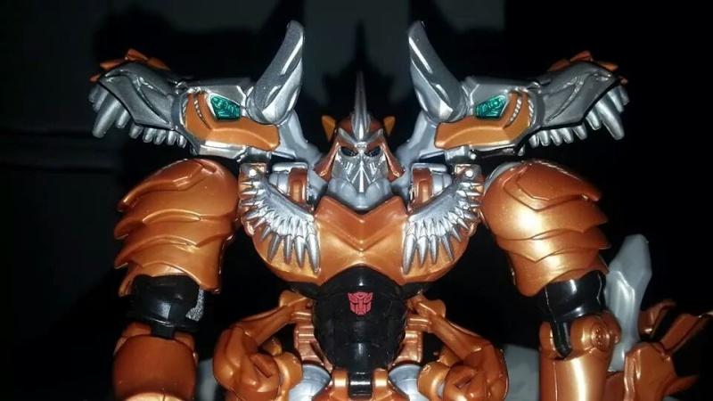Collection Transformers de sylv1  (AOE, CHUG, TF PRIME, BH, MP, LABELS INDÉS ET G1.. ) Img_1294