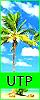 Under the Palmtrees (Confirmación normal) 40x10010