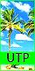 Under the Palmtrees (Confirmación normal) 40x8010