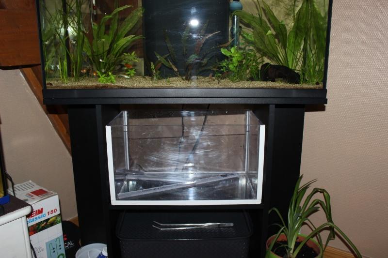 Gain de place pour aquarium Img_1210