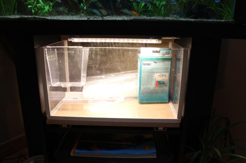 Gain de place pour aquarium Img_1413