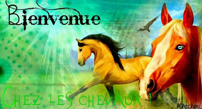 La galerie de Chachouuu 70507910