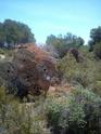 Grand terrain Dsc_0340
