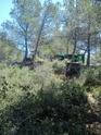 Grand terrain Dsc_0411