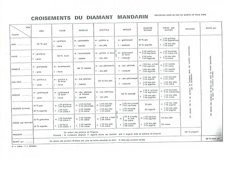 Génétique du diamant  mandarin Tablea10