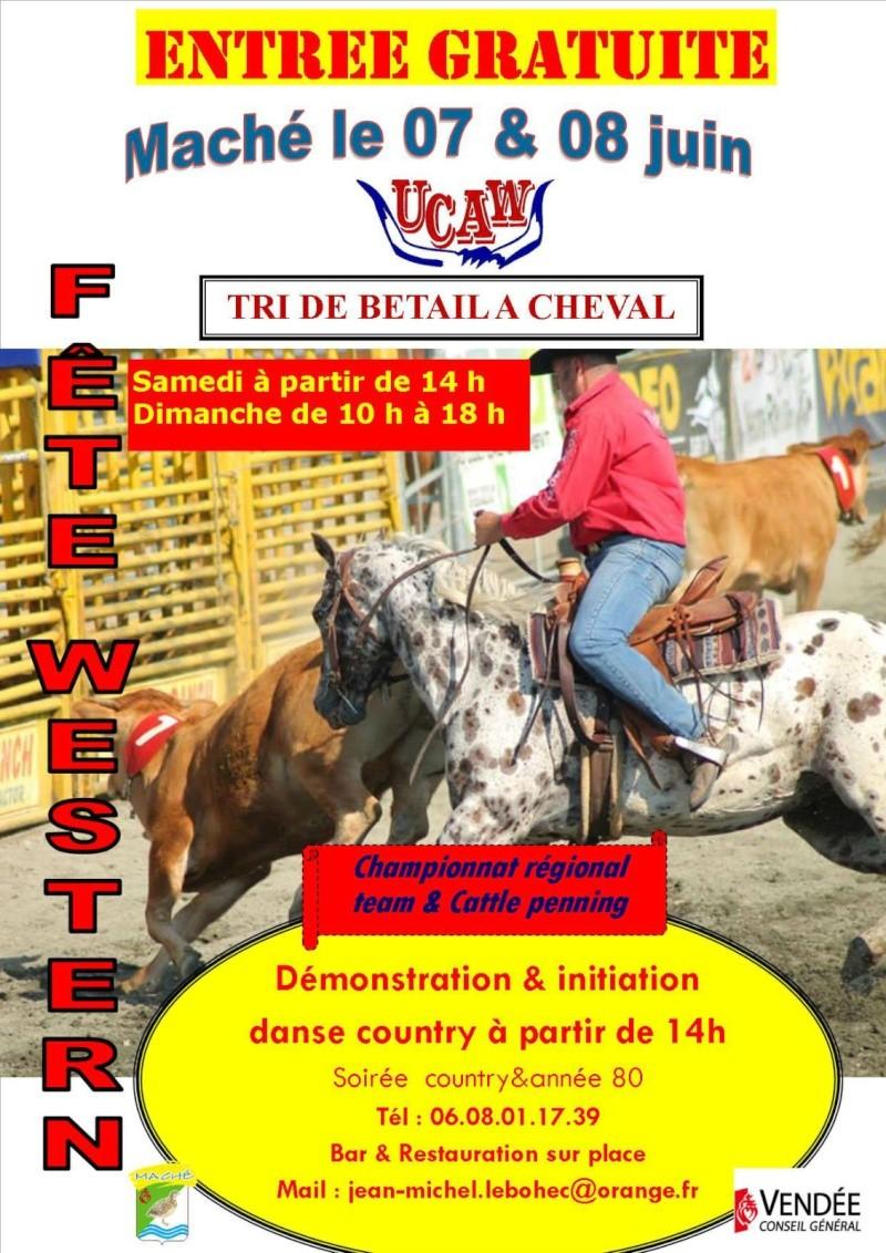 western country   7et8 juin 2014  Maché  85  Bal-a-10