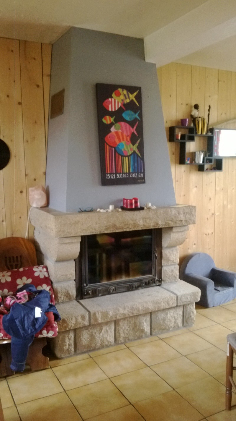 Besoin d'idées pour remoderniser ma cheminée en granit Wp_20113