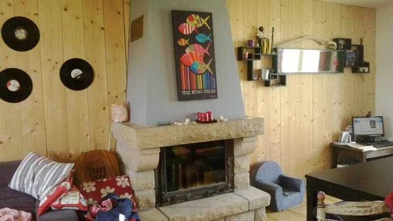 Besoin d'idées pour remoderniser ma cheminée en granit Wp_20114