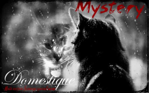 Mystère. || Domestique. || Libre. Myster10