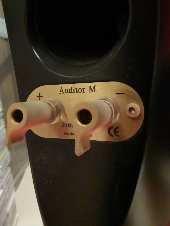 Sonus Faber Cremona Auditor M (Withdrawn) Img_2061