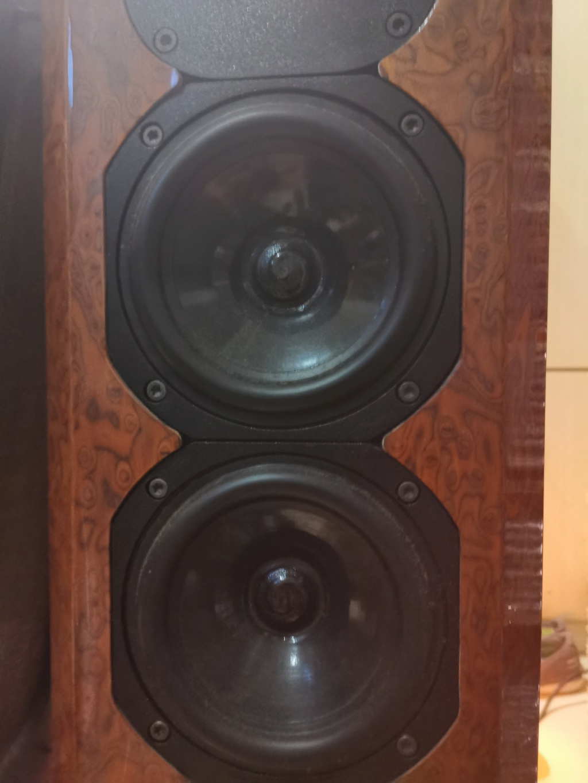 Acustik Lab Bolero Grande Floorstands and Stella Centre Speakers Img_2081