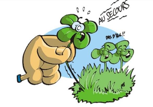 Les défis Botaniques de Shiemi :) - Page 5 110