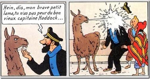Les choses que vous détestez! (alors que normalement, il n'y a aucune raison...) Tintin10