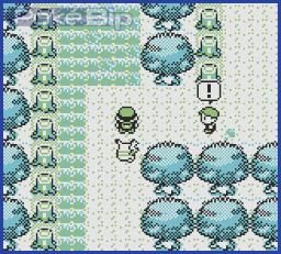 Soluce Pokemon Jaune . Partie 1 : Bourg Palette à Argenta 01210