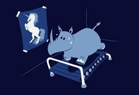 Candidature de Jeune-bombe Rhino10