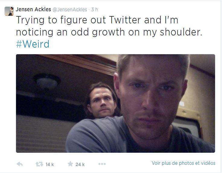 Le Twitter/FB/Insta de Jensen et Danneel 1410