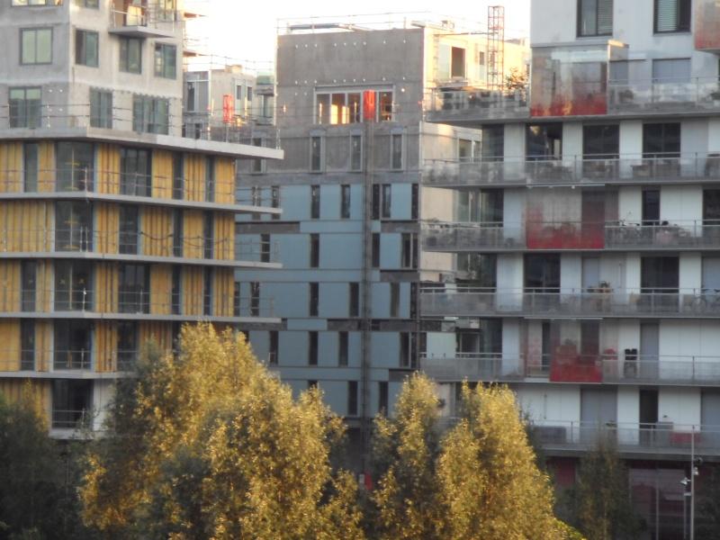 Photos des travaux de Cap sur Seine 06310